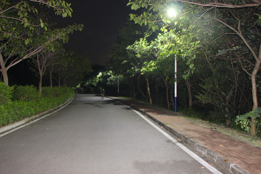 Road Smart-Outside Solar Lights Factory, Outdoor Solar Light With Remote | Road Smart-13