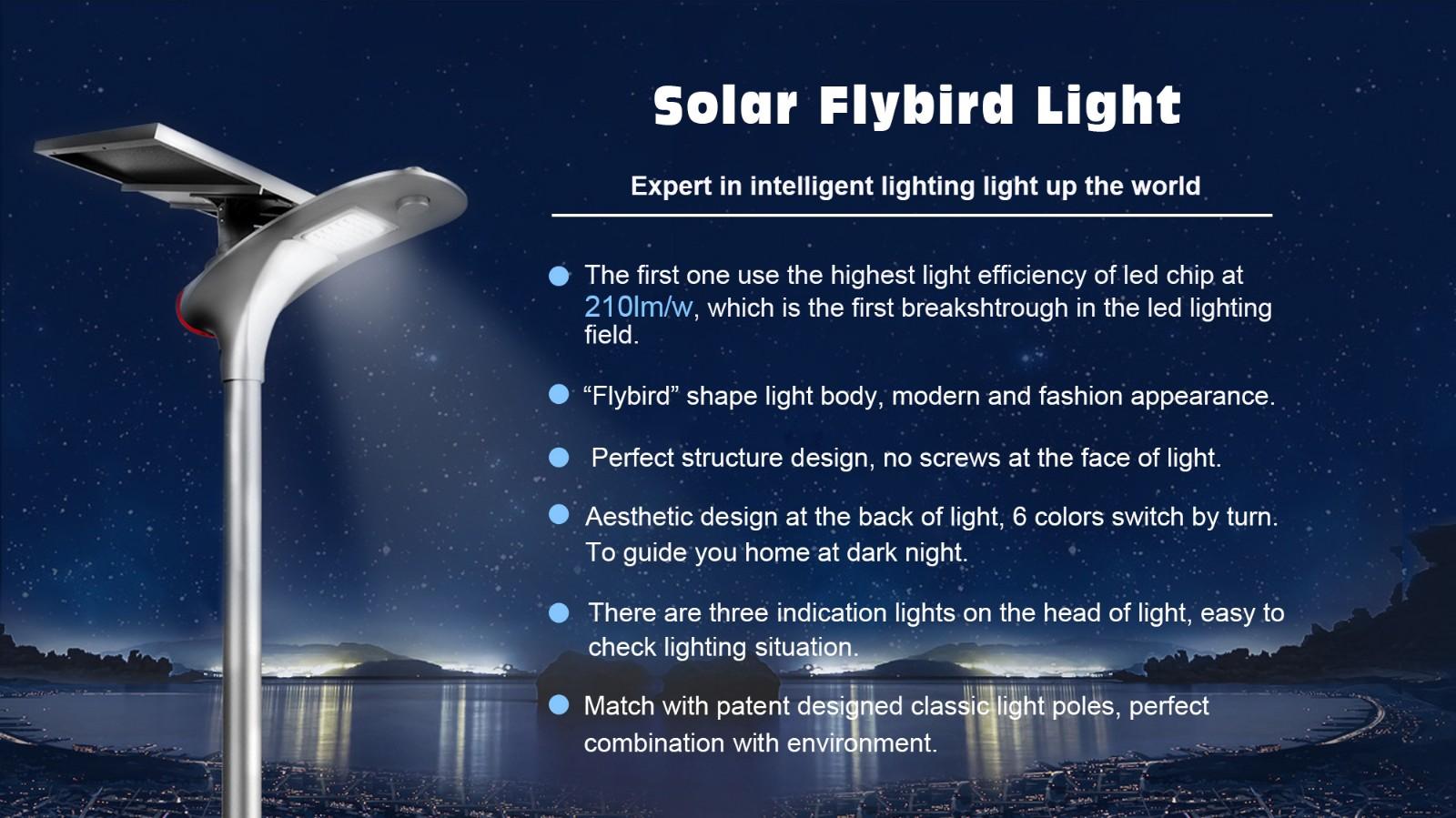 Road Smart-Bulk Solar Led Street Light Manufacturer, Led Street Light With Solar Panel-2